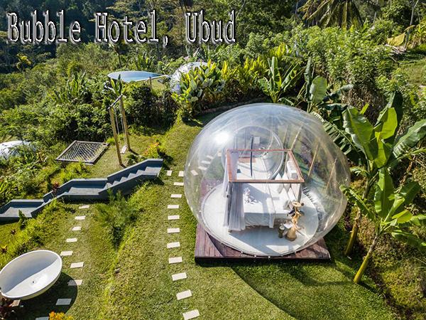 Hotel di Bali Murah dan Bagus Untuk Honeymoon