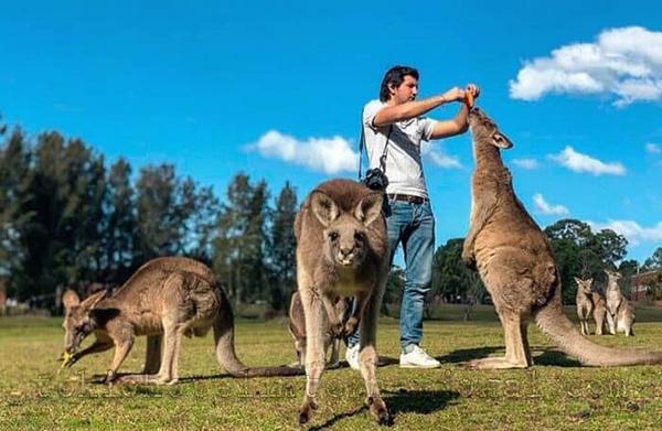 Wisata Alam Australia